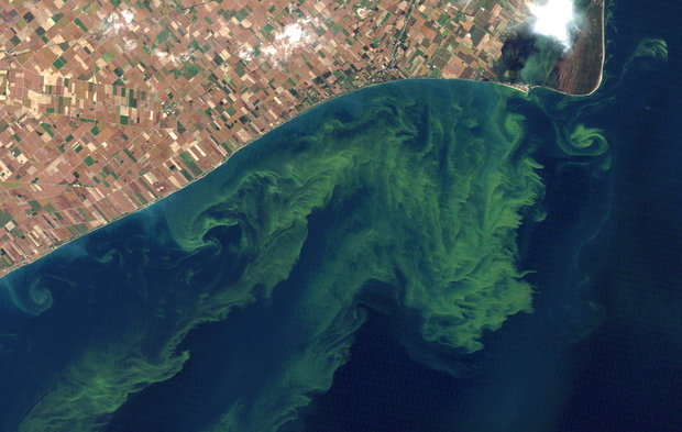 Great Lakes Cleanup Initiative