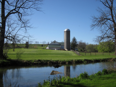 When farmers improve the health of streams on their land, it also improves the health of their herds.