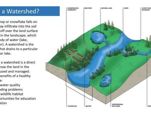Image courtesy of lakecountyil.gov