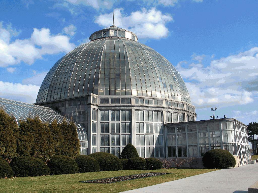Photo courtesy of Robert Thompson via wikimedia