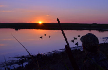 Photo by USFWS Midwest Region via flickr.com