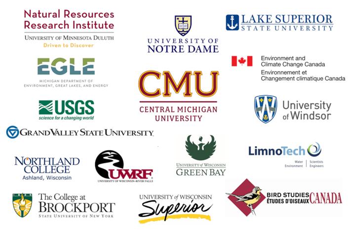 Image courtesy of Central Michigan University