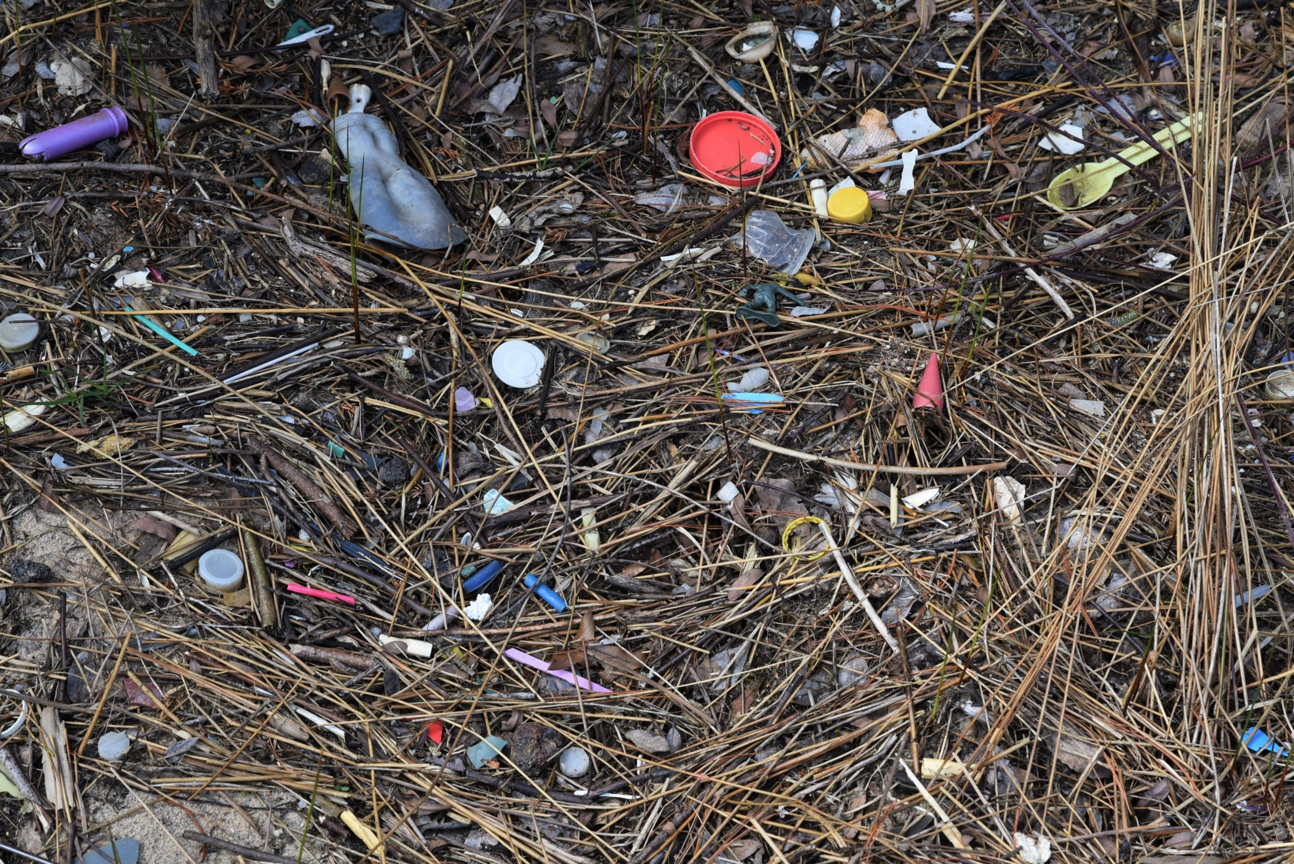 Plastic debris is getting into the Great Lakes, our drinking water, and our food – Great Lakes Now - Great Lakes Now